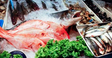 willys-fresh-fish-nassau-county-ny