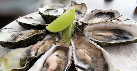 willys-seafood-catering--new-york