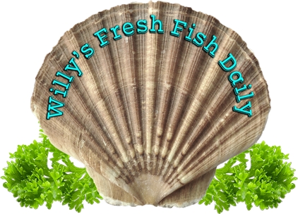 willys-fresh-fish-westbury-shell